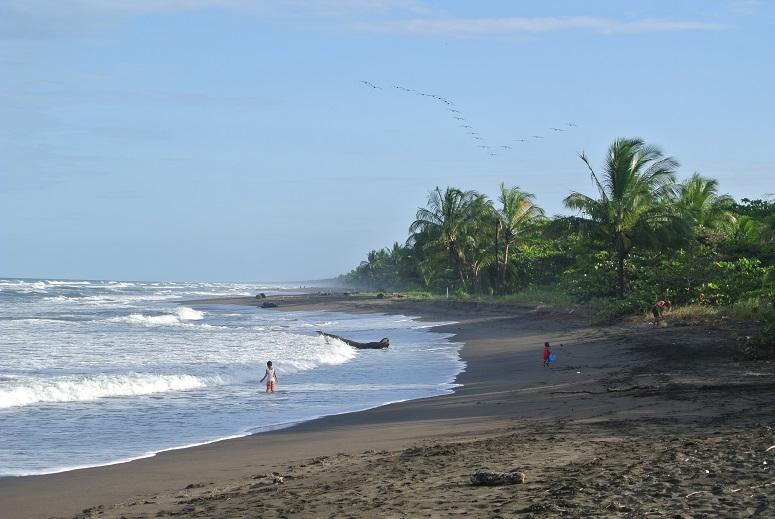 Tortuguero NP, Costa Rica