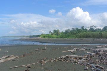 Corcovado NP, Costa Rica