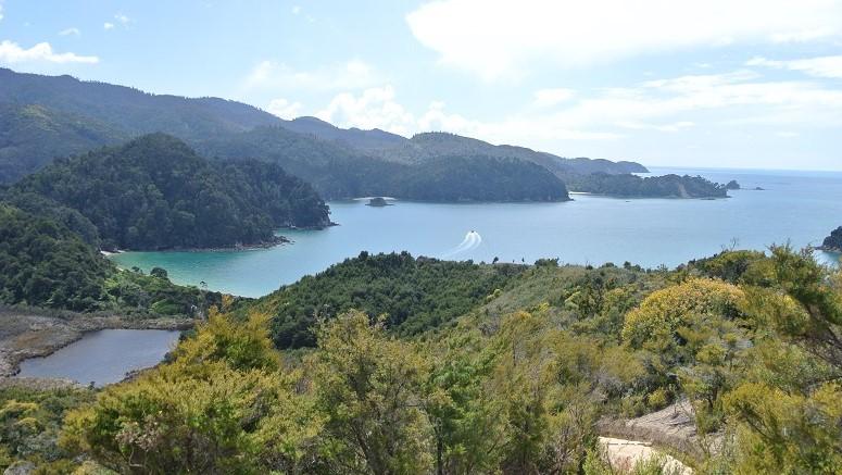 Abel Tasman NP, zuidereiland, Nieuw-Zeeland