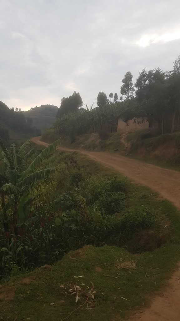 'Onbegaanbare weg' bij Bwindi