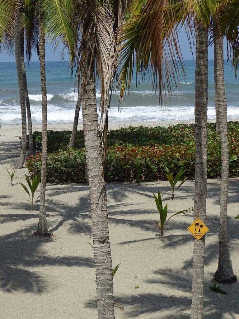 Strand bij tayrona NP, Colombia