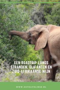 Pin Zuid-Afrika