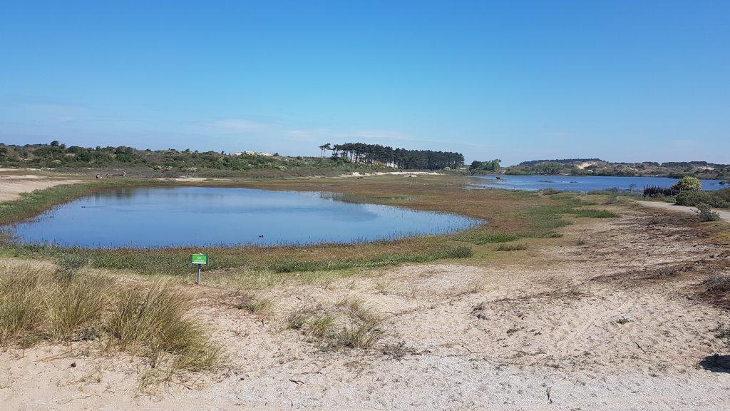 Vogelmeer, Fietsen door Zuid-Kennemerland, Bloemendaal aan Zee