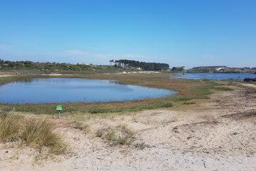 Vogelmeer, Zuid-Kennemerland, Bloemendaal aan Zee