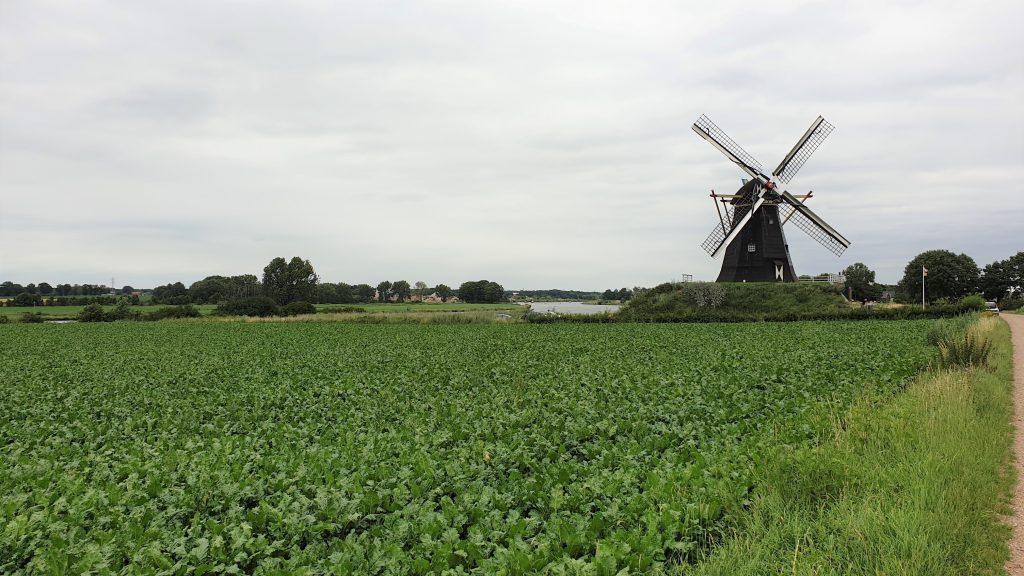 Uitgestrekt Hollands landschap in Limburg
