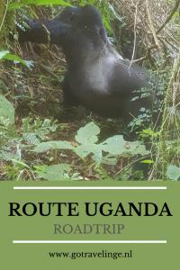 Pin Uganda
