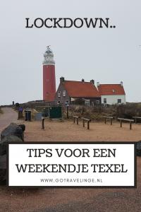 Pin Texel