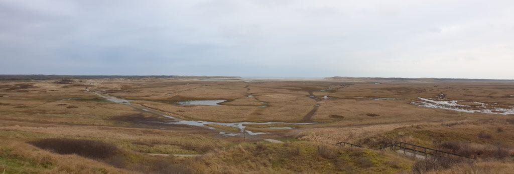 Uitzicht over de Slufter vanaf het uitkijkpunt op de duin in Texel
